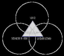 OC Triad