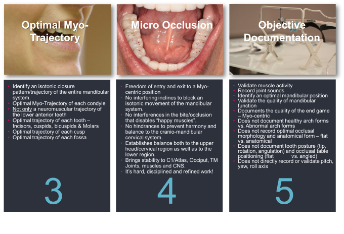 Key Principles of Occlusion - Occlusion Connections 2.png